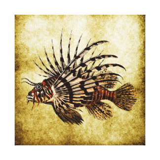 Vintage Lionfish Art Print No.2A Gallery Wrap Canvas