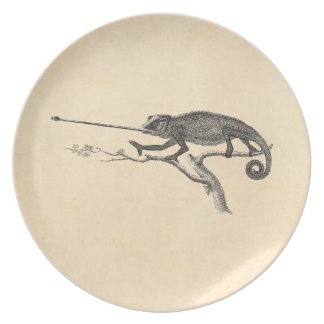 Vintage Lizard Chameleon Illustration Template Plate