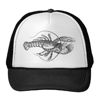 Vintage Lobster illustration Cap