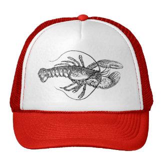 Vintage Lobster illustration Cap