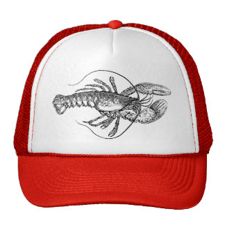 Vintage Lobster illustration Trucker Hat