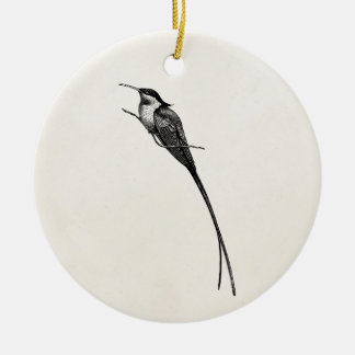 Vintage Long Tailed Hummingbird Illustration Christmas Ornament
