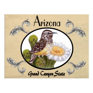 Vintage Look Old Postcard Arizona State