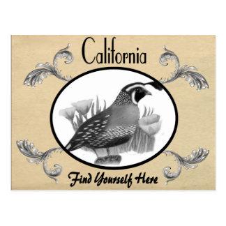 Vintage Look Old Postcard California State