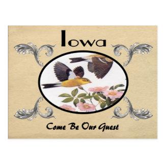 Vintage Look Old Postcard Iowa State
