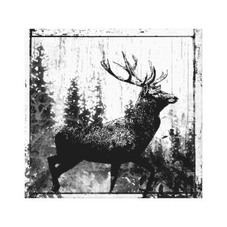 Vintage look Stag in Black and White, Deer Animal Canvas Print