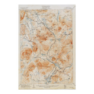Vintage Loon Lake New York Topographical Map Poster