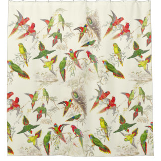 Vintage Lorikeet Parrot Birds Wildlife Animals Shower Curtain