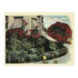 Vintage Los Angeles California Postcards
