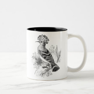 Vintage Madagascar Hoopoe Bird Personalized Birds Two-Tone Coffee Mug