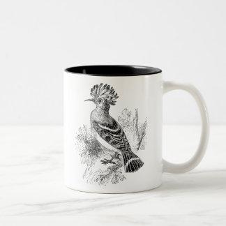 Vintage Madagascar Hoopoe Bird Personalized Birds Two-Tone Mug