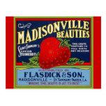Vintage Madisonville LA Strawberry Crate Postcards