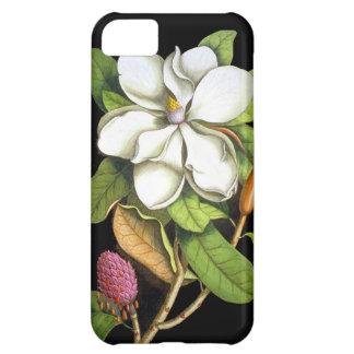 Vintage Magnolia Botanical iPhone 5C Case