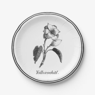 Vintage magnolia flower etching paper plate 7 inch paper plate