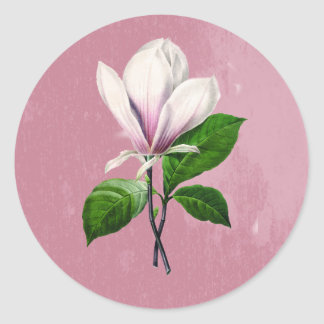 Vintage Magnolia Song Apparel and Gifts Classic Round Sticker