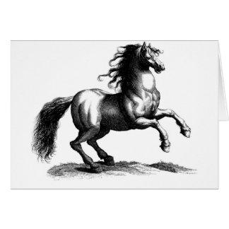 Vintage Majestic Horse Engraving Card