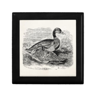 Vintage Mallard Duck Bird - Ducks Birds Template Small Square Gift Box