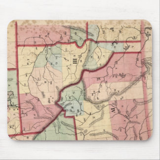 Vintage Map of Idaho (1866) Mouse Pad