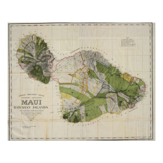 Vintage Map of Maui Island (1906) Poster