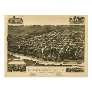 Vintage Map of Tuskaloosa, Alabama - 1887 Postcard