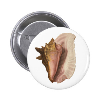 Vintage Marine Life Animal, Queen Conch Seashell Pinback Button