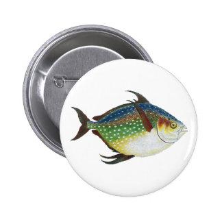 Vintage Marine Life Animal, Tropical Opah Fish Pinback Button