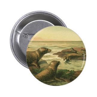 Vintage Marine Life Aquatic Animals, Leopard Seals 6 Cm Round Badge