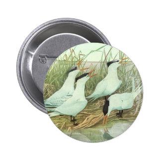 Vintage Marine Life Birds, Shorebirds in a Marsh Pinback Buttons