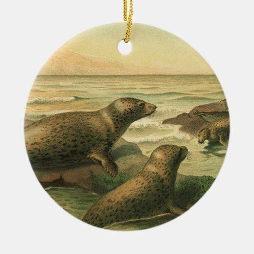 Vintage Marine Life Mammals Animals Pinniped Seals Christmas Tree Ornament