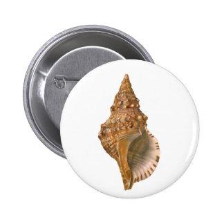 Vintage Marine Life Ocean Animal, Triton Seashell Button