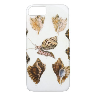 Vintage Marine Life Organisms, Snails and Mollusks iPhone 8/7 Case