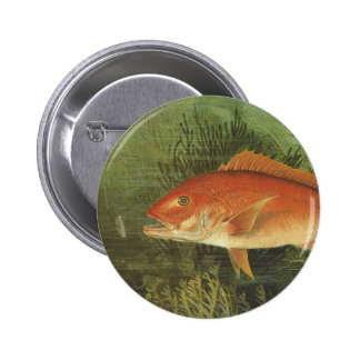 Vintage Marine Life, Red Snapper Fish in the Ocean Buttons