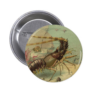 Vintage Marine Sea Life Animals in the Ocean 6 Cm Round Badge