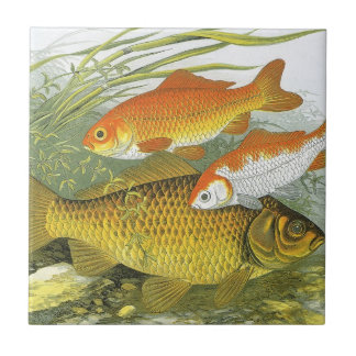 Vintage Marine Sea Life Fish, Aquatic Goldfish Koi Small Square Tile