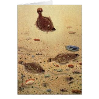 Vintage Marine Sea Life Trio Flat Fish Flounders Greeting Card