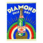 Vintage Matchbook Diamond Pale Dry Ginger Ale Postcard