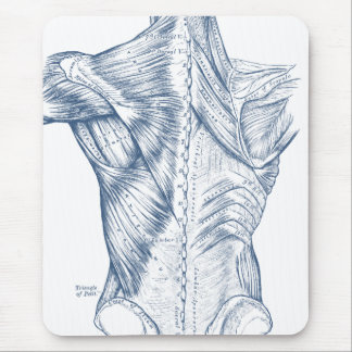 Vintage Medical Drawing Back Muscles Blue (1890) Mouse Pad