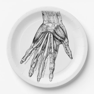 Vintage Medical Drawing Muscles of the Hand 9 Inch Paper Plate