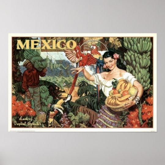 Vintage Mexico Land of Tropical Splendour Poster