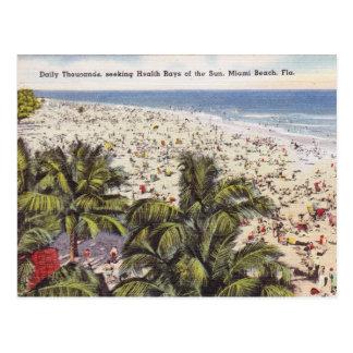 Vintage Miami Beach Florida Postcard
