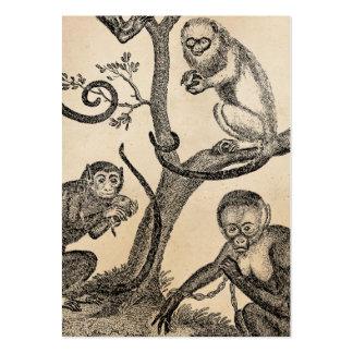 Vintage Monkey Illustration - 1800's Monkeys Business Cards