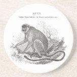 Vintage monkey illustration beverage coasters