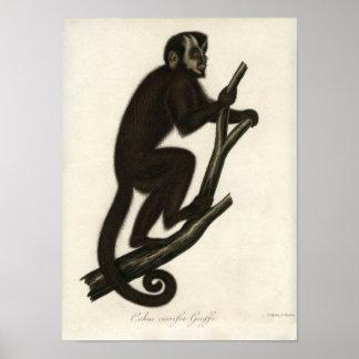 Vintage Monkey Poster