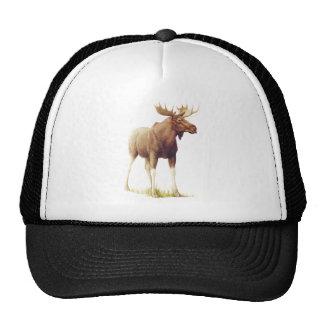 Vintage Moose Illustration, Animal Drawing Cap