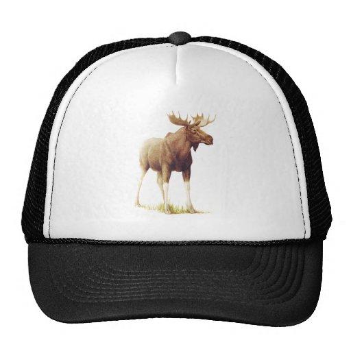 Vintage Moose Illustration, Animal Drawing Trucker Hat