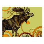Vintage Moose Postcards