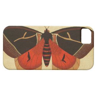 Vintage Moth iPhone 5 Cases