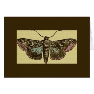 Vintage Moth Greeting Card