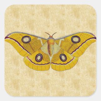 Vintage Moth Square Sticker