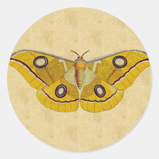 Vintage Moth Round Stickers